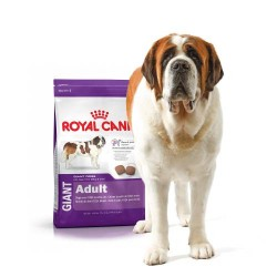 Royal Canin Giant dry food...
