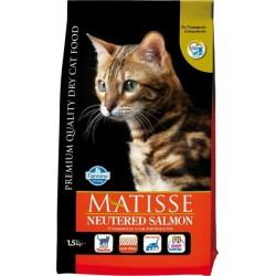 Matisse Neutered Salmon...