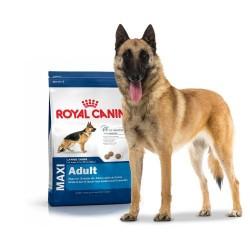 Royal Canin Maxi dry food...